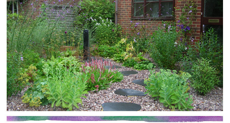 Landscaping front garden ideas with gravel for Front garden designs uk
