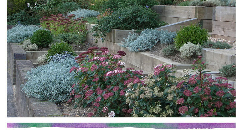 Terraced front garden design image mag - Garden design terraced house ...